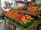 магазинов менеджер по продаже овощей предпринимателю ПЛЕТНЕВА