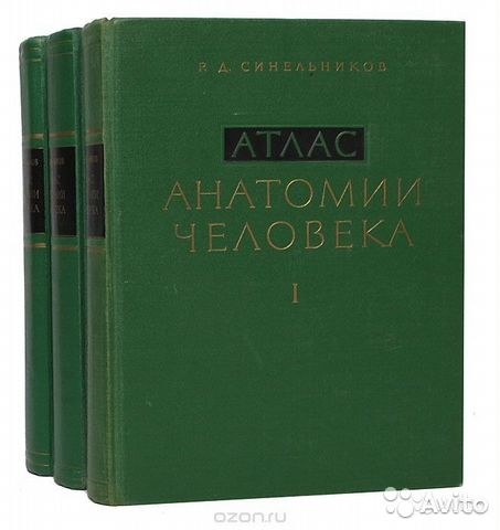 Атлас анатомии, Р.Д.Синельников 89523791339 купить 1