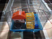 Клетки для грызунов