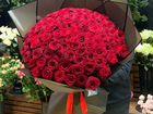 Розы цветы букеты 25 31 51 101 201 301 опт